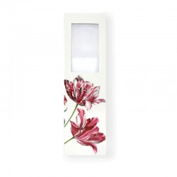 Marque Page Loupe Tulipe Merian