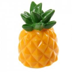 Gloss à Lèvres - Ananas