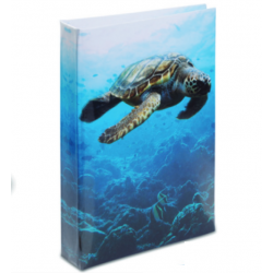 Journal Intime Tortue