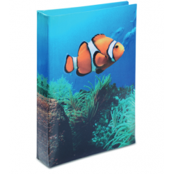 Journal Intime Poisson Clown 2