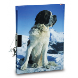 Journal Intime Saint Bernard
