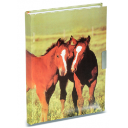 Journal Intime Cheval 3