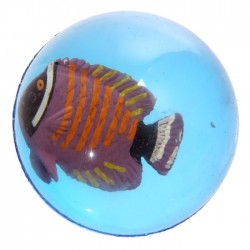 Balle Rebondissante Poissons Tropicaux 6
