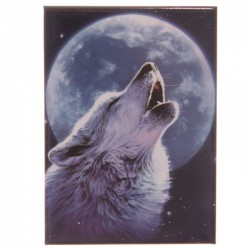 Magnet Loup 3