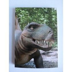 Carnet de Note Dinosaure 1