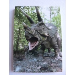 Carnet de Note Dinosaure 5