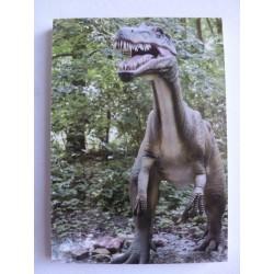 Carnet de Note Dinosaure 6