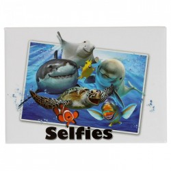 Magnet Selfie Animaux Marins