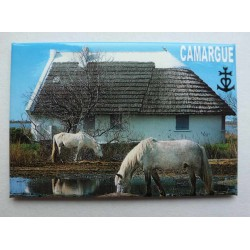 Magnet Camargue 03