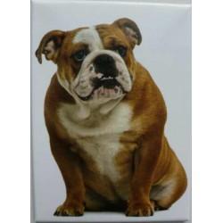 Magnet Bulldog