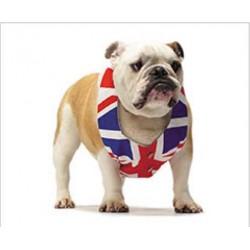 Tapis de Souris Bulldog GB