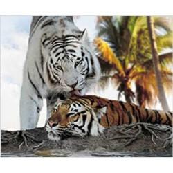 Tapis de Souris Tigre Blanc Calin