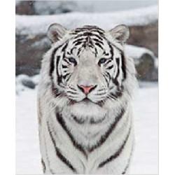 Tapis de Souris Tigre Blanc