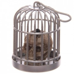 Tête de Mort Crâne en Cage (Araignée Tête)