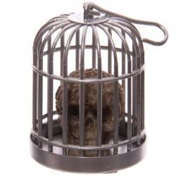 Tête de Mort Crâne en Cage