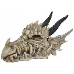 Boîte Tête de Dragon