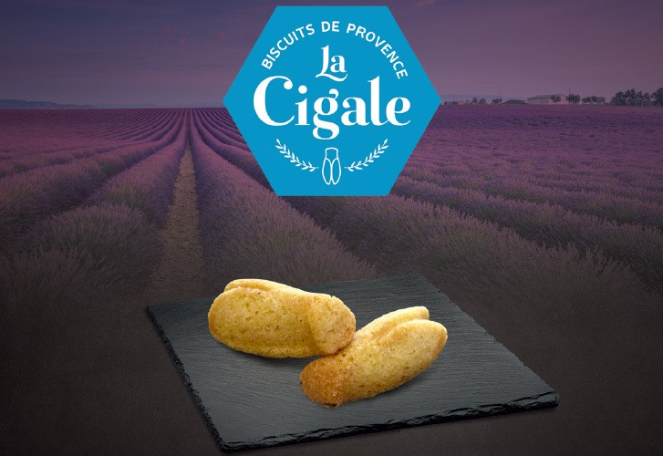"Biscuit ""La Cigale"""