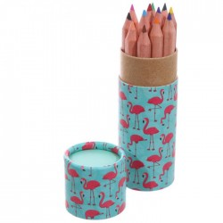 Tube de Crayons de Couleur - Flamants Roses