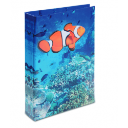 Journal Intime Poisson Clown 3