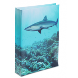 Journal Intime Requin