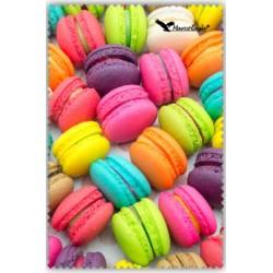 Chif' Fou' Net Macarons