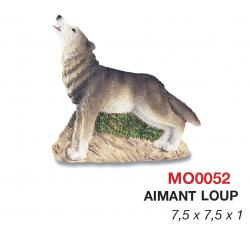 Magnet Loup