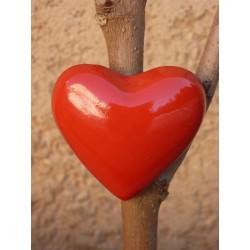 Magnet Coeur