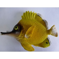 Magnet Poisson Tropical 2