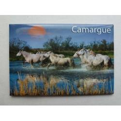 Magnet Camargue 01