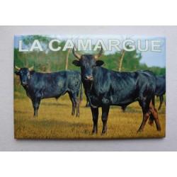 Magnet Camargue 02