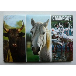 Magnet Camargue 08