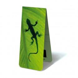 Gecko sur Feuille