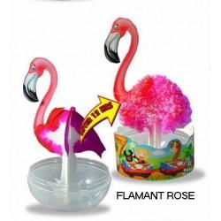 Eclosion Flamant Rose - Zoo Papier Magique