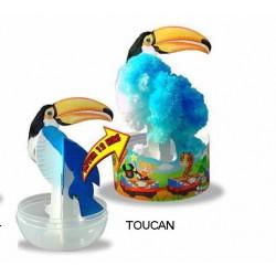 Eclosion Toucan - Zoo Papier Magique