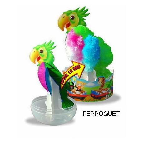 Eclosion Perroquet - Zoo Papier Magique