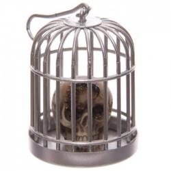 Tête de Mort Crâne en Cage (Scolopendre)